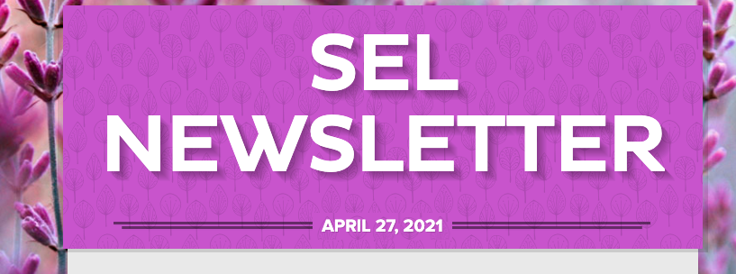 SEL newsletter graphic