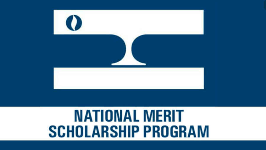 National Merit Corp logo